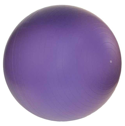 Anti-Burst Gym Ball w/ Pump- 65cm