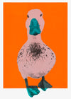 Duck a l'orange II