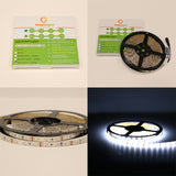 12V UL Strip Light 3528 SMD 16.5ft. 1.7W/ft & 3.5W/ft