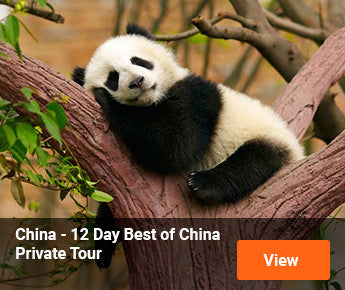 Travelbay  China – 12 Day Best of China Private Tour
