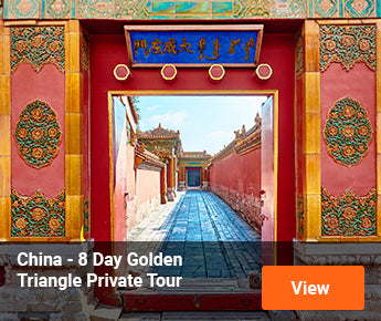 Travelbay China Tours - 8 Day Golden Triangle Private Tour