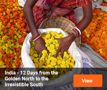 Travelbay  India - 12 Days from Golden North to Irresistible South