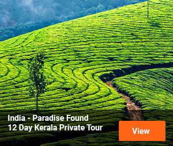 Travelbay  India - Paradise Found - 12 Day Kerala Private Tour