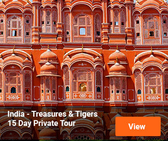 Travelbay  India - Treasures & Tigers - 15 Day Private Tour