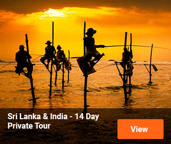 Travelbay Sri Lanka Tours