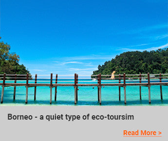 Travelbay-Blog-Borneo-a-quiet-type-of-eco-tourism
