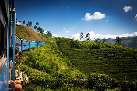 Travelbay Blog - Sri Lanka Tours - Sri Lanka, the new travel hot spot - train ride