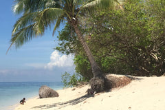 Travelbay Borneo Private Tours - Selingan Island