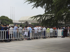 Travelbay China Reviews - Ray Renfrey, queues at Terracotta Warriors, Xian