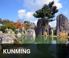 Travelbay China Tailor Made Tours - Kunming - Stone Forest