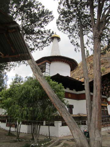Travelbay Customer Reviews - Bhutan Tours - Cheryl White - Paro