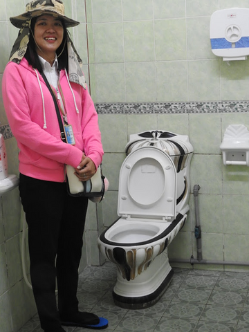 Travelbay Customer Reviews - Brunei Tours - Bandar Seri Begawan Toilet BSB