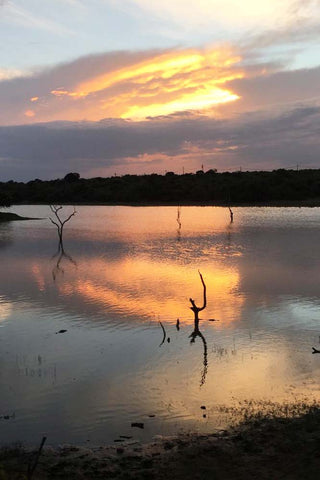 Travelbay Customer Reviews - Catherine Hingston - Lagoon at Cinnamon Wild, Yala