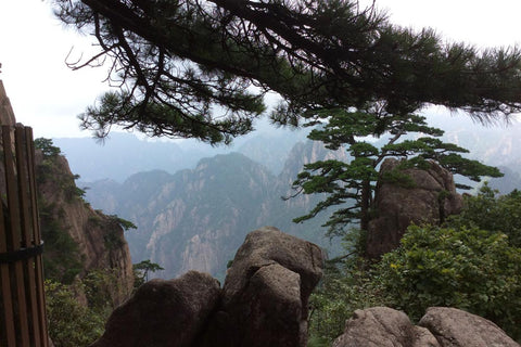 Travelbay Customer Reviews - Ray & Rose Schmidt in China - Mt Huangshan 2