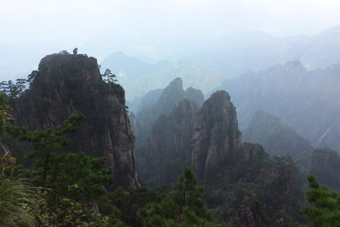 Travelbay Customer Reviews - Ray & Rose Schmidt in China - Mt Huangshan 3