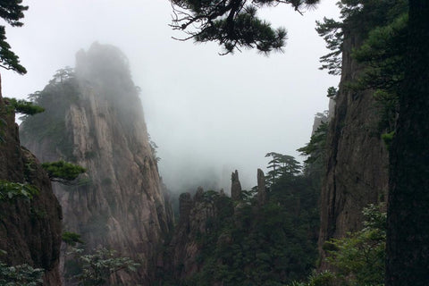 Travelbay Customer Reviews - Ray & Rose Schmidt in China - Mt Huangshan 5