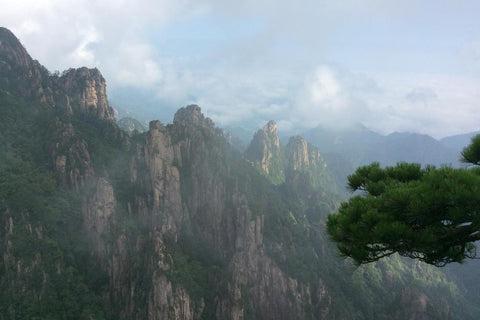 Travelbay Customer Reviews - Ray & Rose Schmidt in China - Mt Huangshan 6