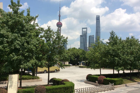 Travelbay Customer Reviews - Ray & Rose Schmidt in China - Shanghai, The Bund