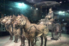 Travelbay Customer Reviews - Ray & Rose Schmidt in China - Xian - Terracotta Warriors 4