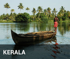 Travelbay India Tailor Made Tours - Kerala -backwaters
