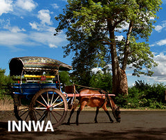 Travelbay Myanmar Tailor Made Tours - Innwa - Horse and cart