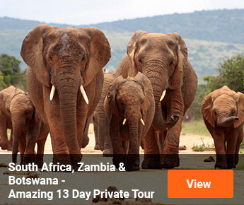 Travelbay Southern Africa Tours - South Africa, Zambia & Botswana  - Amazing 13 Day Private Tour