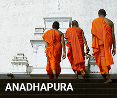 Travelbay Sri Lanka Tailor Made Tours - Anadhapura