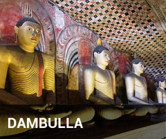 Travelbay Sri Lanka Tailor Made Tours - Dambulla - golden temple