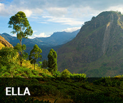 Travelbay Sri Lanka Tailor Made Tours - Ella