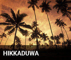 Travelbay Sri Lanka Tailor Made Tours - Hikkaduwa