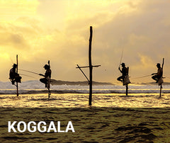 Travelbay Sri Lanka Tailor Made Tours - Koggala