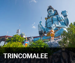Travelbay Sri Lanka Tailor Made Tours - Giant Blue Shiva Statue, Trincomalee