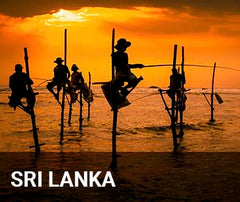 Travelbay Sri Lanka Tailor Made Tours