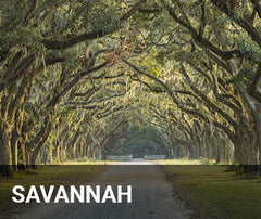Travelbay USA Tailor Made Tours - Savannah - Park