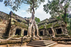 Travelbay South East Asia - 21 Days in Thailand, Laos, Cambodia and Vietnam - Ta Phrom, Angkor Wat