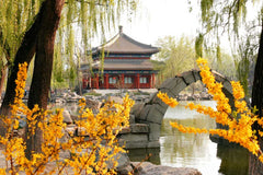 Travelbay China Tours - 8 Day Golden Triangle Private Tour - China Private Tours - Forbidden City, Beijing, China