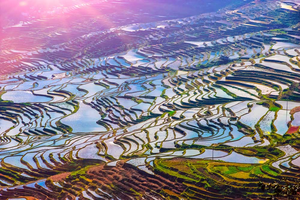 Travelbay China Tours - 7 Days of Complete Wow in the Yunnan Province - Private Tour - China Private Tours - Rice Fields, Yunnan