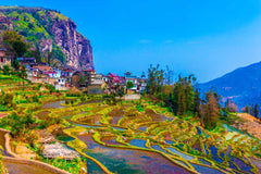 Travelbay China Tours - 7 Days of Complete Wow in the Yunnan Province - Private Tour - China Private Tours - Rice Fields with Houses, Yunnan