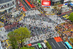 Travelbay Japan Tours - 8 Day Highlights of Japan - Japan Private Tours - Shibuya Crossing, Tokyo