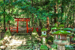 Travelbay Japan Tours - 8 Day Highlights of Japan - Japan Private Tours - Torii Gate, Nara