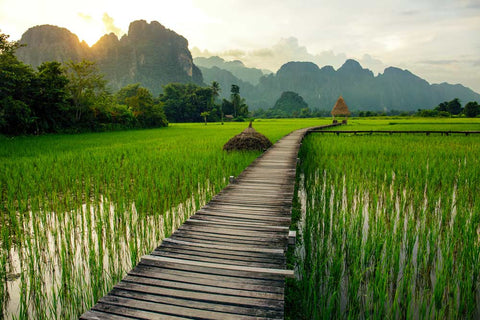 Laos – North to the South in 12 Days ~ Gorgeous Private Tour