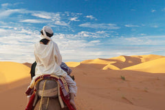 Travelbay Morocco Tours - 11 Day Exotic Morocco Private Tour - Morocco Private Tours - Camel ride, Sahara Desert