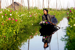Travelbay Myanmar Tours - 12 Day Magnificence of Myanmar including Beach Break - Myanmar Private Tours - Gardener in Inle Lake, Nyaungshwe