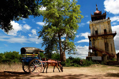Travelbay Myanmar Tours - 10 Day Magical Myanmar Tour including 4 Night Cruise - Myanmar Private Tours - Inwa, Myanmar