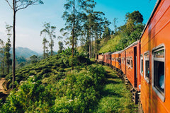 Travelbay Sri Lanka Tours - The Wonders if Sri Lanka in 14 Days - Sri Lanka Private Tours - Train ride from Kandy to Nanu Oya