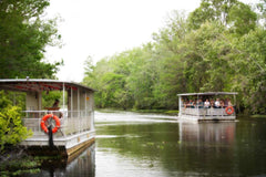 Travelbay USA Tours - 11 Day Deep South Tour - New Orleans, Nashville & Memphis - Swamp, New Orleans