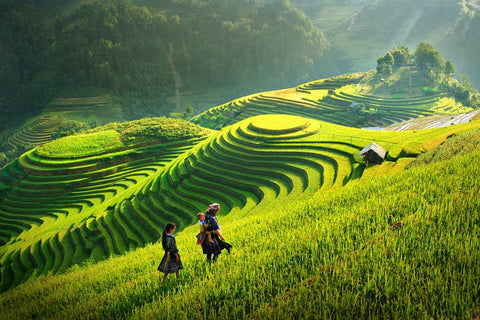 Vietnam - 3 Days in the Spectacular Sapa