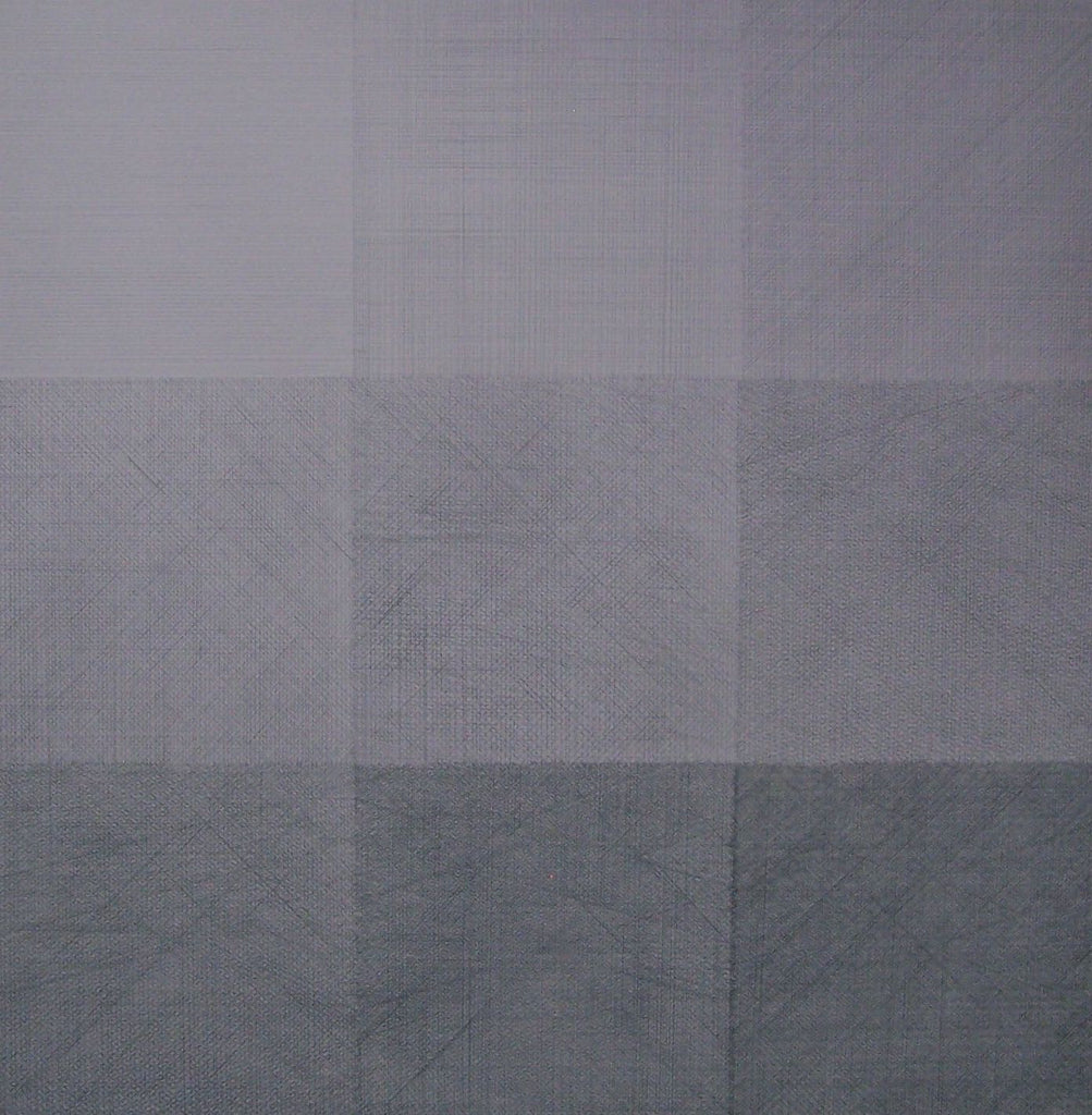 Diptych Light 120x120cm Oil and Graphite on Linen 2009