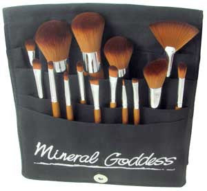 15 piece Brush Set in Pro Brush Belt - Kylies Professional Makeup