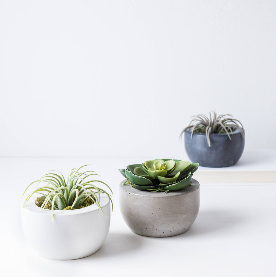Concrete Planter Set